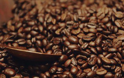 All hail the great Arabica Coffee Bean